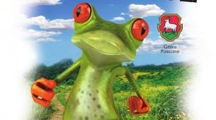 koszulka_frog-2018-1